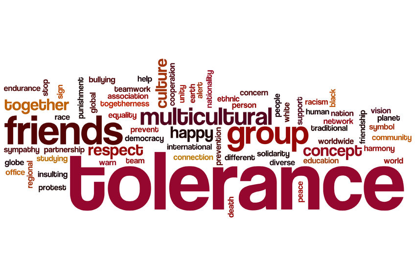 34098835 - tolerance word cloud concept