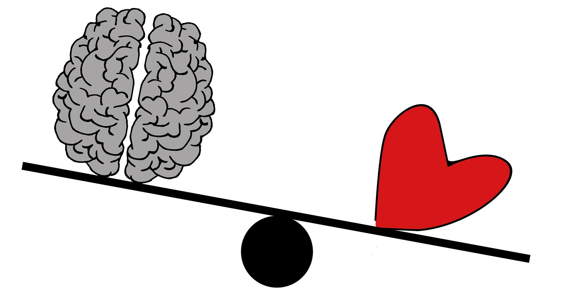 brain-2146168_1920